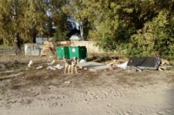 После  вмешательства  Уполномоченного  мусорную  контейнерную площадку  убрали  от  детского  садика